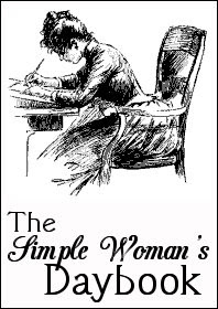 This image has an empty alt attribute; its file name is b1bd7-simple-woman-daybook-large.jpg